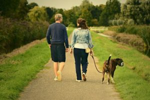 Couple taking a walk with dog