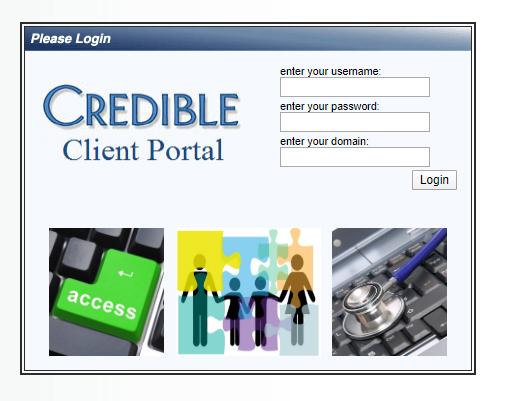 Credible Client Portal Screenshot Older Version