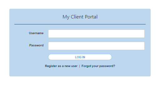 Client Portal Log-in Screenshot